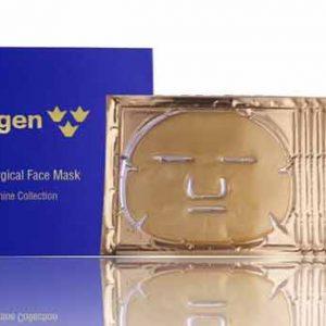 Skogen Non Surgical Face Mask